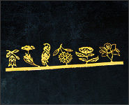 Einlegemotive Blumen